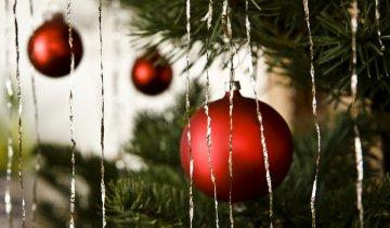 Reflita com este texto e prepare os caminhos para a festa de Deus conosco, o Natal